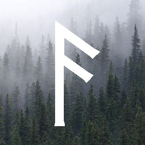Ansuz Rune Meaning - The Wicked Griffin