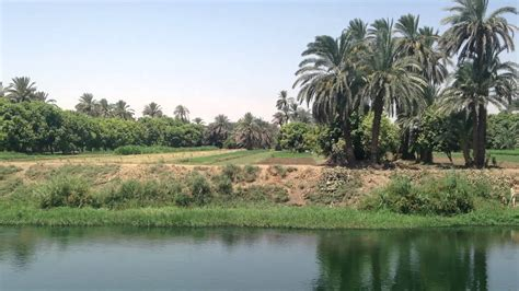 NILE DRIFT - 40 Minutes of Relaxing Nile Cruise Footage
